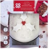 iced-christmas-cake.jpg