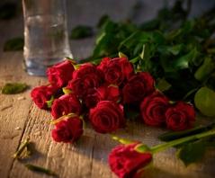 Roses Lifestyle Shot v2