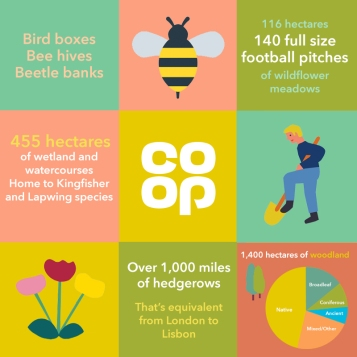 FoodPolicy_BeeBlog_infographic